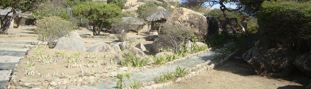 Guia de Aruba