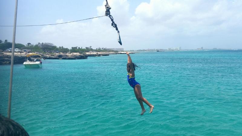 filhota voando sobre o mar